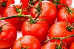 φρέσκες κόκκινες ντομάτες κινηματογραφήσεων σε πρώτο πλάνο Στοκ φωτογραφία με δικαίωμα ελεύθερης χρήσης