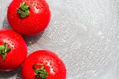 Φρέσκες κόκκινες ντομάτες με τις πτώσεις σε ένα υπόβαθρο πιάτων Στοκ Εικόνες