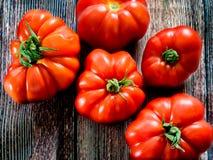 Φρέσκες κόκκινες ντομάτες Marmande RAF Στοκ φωτογραφία με δικαίωμα ελεύθερης χρήσης
