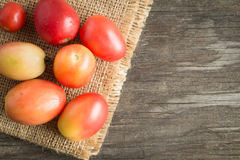 Φρέσκες κόκκινες ντομάτες sackcloth Στοκ φωτογραφίες με δικαίωμα ελεύθερης χρήσης