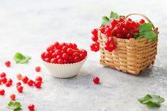 Φρέσκες κόκκινες σταφίδες Στοκ φωτογραφία με δικαίωμα ελεύθερης χρήσης