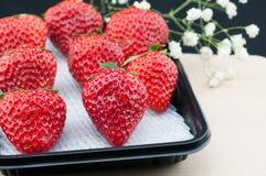 Φρέσκες κόκκινες φράουλες Στοκ Εικόνα