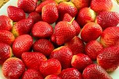 φρέσκες κόκκινες φράουλ Στοκ Εικόνες