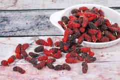 Φρέσκες μαύρες και κόκκινες ώριμες μουριές στο ξύλο Στοκ εικόνες με δικαίωμα ελεύθερης χρήσης