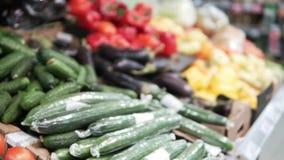 Φρέσκες μελιτζάνες, κολοκύθα, ντομάτες, αγγούρια και άλλα λαχανικά απόθεμα βίντεο