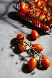 Φρέσκες ντομάτες κερασιών στον κλάδο στο καλάθι σιδήρου Στοκ Εικόνες