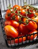 Φρέσκες ντομάτες κερασιών στον κλάδο στο καλάθι σιδήρου Στοκ Φωτογραφίες