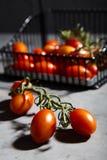 Φρέσκες ντομάτες κερασιών στον κλάδο στο καλάθι σιδήρου Στοκ Φωτογραφία