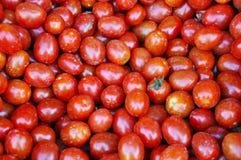 Φρέσκες ντομάτες κερασιών Στοκ φωτογραφία με δικαίωμα ελεύθερης χρήσης
