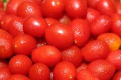 Φρέσκες ντομάτες κερασιών Στοκ εικόνα με δικαίωμα ελεύθερης χρήσης