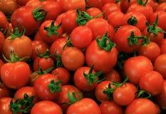 φρέσκες ντομάτες κερασι Στοκ εικόνες με δικαίωμα ελεύθερης χρήσης