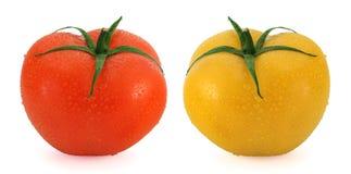 Φρέσκες ντομάτες - κόκκινο και κίτρινος στοκ εικόνες