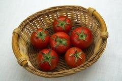 Φρέσκες ντομάτες σε ένα καλάθι Στοκ Φωτογραφία