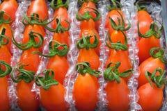 Φρέσκες ντομάτες σταφυλιών με την προστατευτική συσκευασία Στοκ εικόνες με δικαίωμα ελεύθερης χρήσης