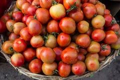 Φρέσκες ντομάτες στην αγορά Στοκ Φωτογραφίες