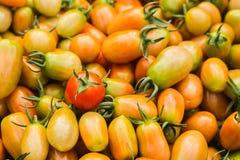 φρέσκες ντομάτες σωρών Κινηματογράφηση σε πρώτο πλάνο στοκ εικόνα με δικαίωμα ελεύθερης χρήσης