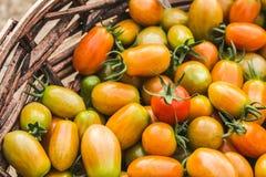 φρέσκες ντομάτες σωρών Κινηματογράφηση σε πρώτο πλάνο στοκ φωτογραφίες
