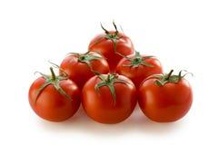 φρέσκες ντομάτες Στοκ Φωτογραφίες