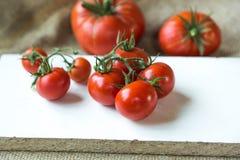φρέσκες ντομάτες Cerry Στοκ φωτογραφία με δικαίωμα ελεύθερης χρήσης