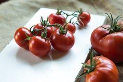 φρέσκες ντομάτες Cerry Στοκ Εικόνα