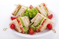 Φρέσκες νόστιμες σαλάτα και φρυγανιά σάντουιτς λεσχών στοκ εικόνα