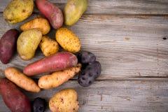 Φρέσκες οργανικές ποικιλίες πατατών Στοκ Εικόνες