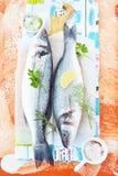 Φρέσκες πέρκες θάλασσας με τα χορτάρια Στοκ Φωτογραφία