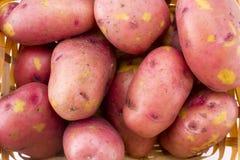 Φρέσκες πατάτες στο καλάθι που απομονώνεται στο λευκό Στοκ Φωτογραφία