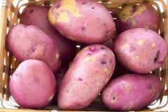 Φρέσκες πατάτες στο καλάθι που απομονώνεται στο λευκό Στοκ Φωτογραφίες