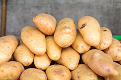φρέσκες πατάτες Στοκ Εικόνες