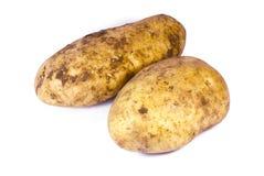 φρέσκες πατάτες Στοκ φωτογραφία με δικαίωμα ελεύθερης χρήσης
