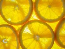Φρέσκες πορτοκαλιές στρογγυλές φέτες Στοκ Εικόνες