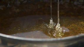 Φρέσκες ροές μελιού στο σκάφος Φαίνεται πολύ ορεκτικός Εξαγωγή του μελιού μελισσών Μακροεντολή κίνηση αργή απόθεμα βίντεο