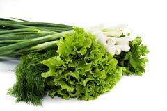 φρέσκες σαλάτες στοκ φωτογραφία
