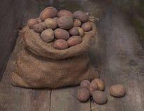 Φρέσκες συγκομισμένες πατάτες που ανατρέπουν από μια burlap τσάντα, σε ένα roug Στοκ φωτογραφία με δικαίωμα ελεύθερης χρήσης