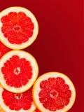 Φρέσκες φέτες γκρέιπφρουτ που απομονώνονται σε ένα κόκκινο κλίσης Στοκ Φωτογραφίες