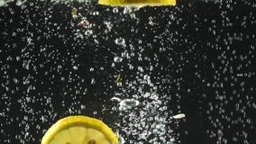 Φρέσκες φέτες λεμονιών που περιέρχονται στο νερό στο μαύρο υπόβαθρο Εσπεριδοειδή στο νερό με τις φυσαλίδες Οργανική τροφή, υγιής απόθεμα βίντεο