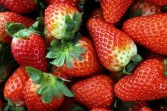 Φρέσκες φράουλες στο καφετί ξύλινο υπόβαθρο Μια ομάδα strawb Στοκ φωτογραφίες με δικαίωμα ελεύθερης χρήσης