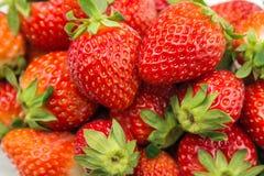 φρέσκες φράουλες Στοκ Εικόνα