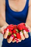 φρέσκες φράουλες κινημ&alpha Στοκ Εικόνα