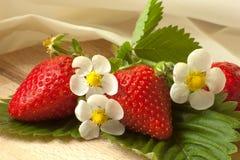 φρέσκες φράουλες με τα λουλούδια και το μετάξι στοκ φωτογραφία