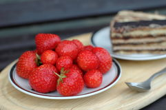 φρέσκες φράουλες πιάτων Στοκ φωτογραφία με δικαίωμα ελεύθερης χρήσης