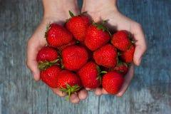 Φρέσκες φράουλες στα αρσενικά χέρια Στοκ Φωτογραφία