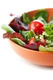 φρέσκες ώριμες ντομάτες σαλάτας Στοκ εικόνες με δικαίωμα ελεύθερης χρήσης