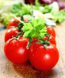 φρέσκες ώριμες ντομάτες Στοκ φωτογραφίες με δικαίωμα ελεύθερης χρήσης
