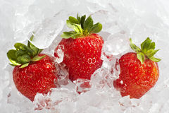 Φρέσκες ώριμες φράουλες με τους κύβους πάγου Στοκ φωτογραφίες με δικαίωμα ελεύθερης χρήσης