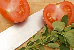 φρέσκες oregano ντομάτες Στοκ φωτογραφία με δικαίωμα ελεύθερης χρήσης