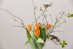 Φρέσκια δέσμη άνοιξη των πορτοκαλιών τουλιπών και των πράσινων φύλλων και δύο μικρά πουλιά στο συμπαθητικό cristal βάζο γυαλιού Ε Στοκ Εικόνες
