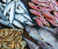 φρέσκια αγορά ψαριών Στοκ εικόνες με δικαίωμα ελεύθερης χρήσης