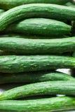 Φρέσκια ακατέργαστη πράσινη σειρά των αγγουριών Στοκ φωτογραφία με δικαίωμα ελεύθερης χρήσης